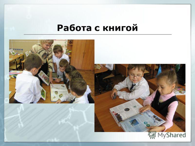 Работа с книгой