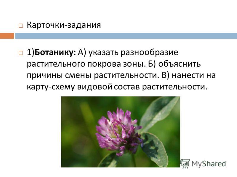 Карточки - задания 1) Ботанику : А ) указать разнообразие растительного покрова зоны. Б ) объяснить причины смены растительности. В ) нанести на карту - схему видовой состав растительности.