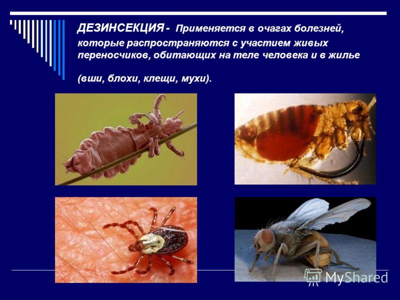 ДЕЗИНСЕКЦИЯ - Применяется в очагах болезней, которые распространяются с участием живых переносчиков, обитающих на теле человека и в жилье (вши, блохи, клещи, мухи).