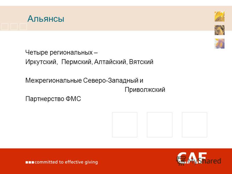 Альянсы Четыре региональных – Иркутский, Пермский, Алтайский, Вятский Межрегиональные Северо-Западный и Приволжский Партнерство ФМС