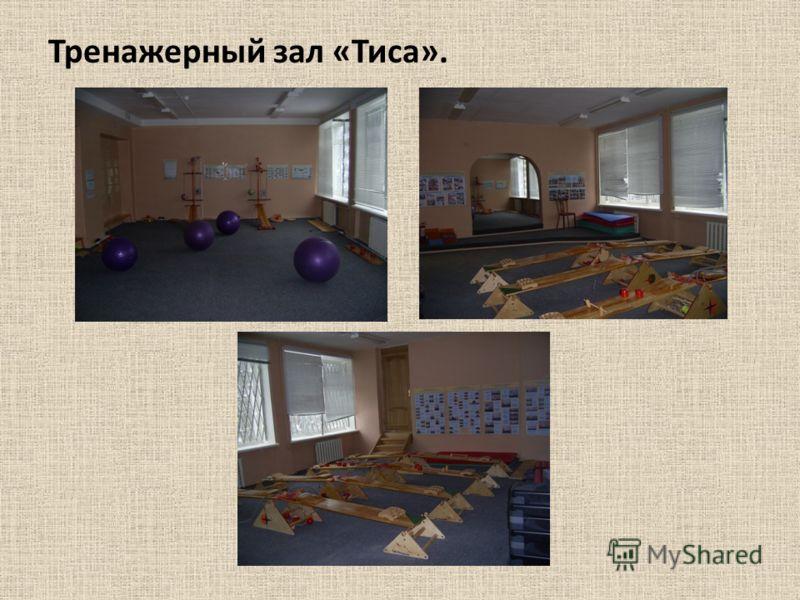 Тренажерный зал «Тиса».
