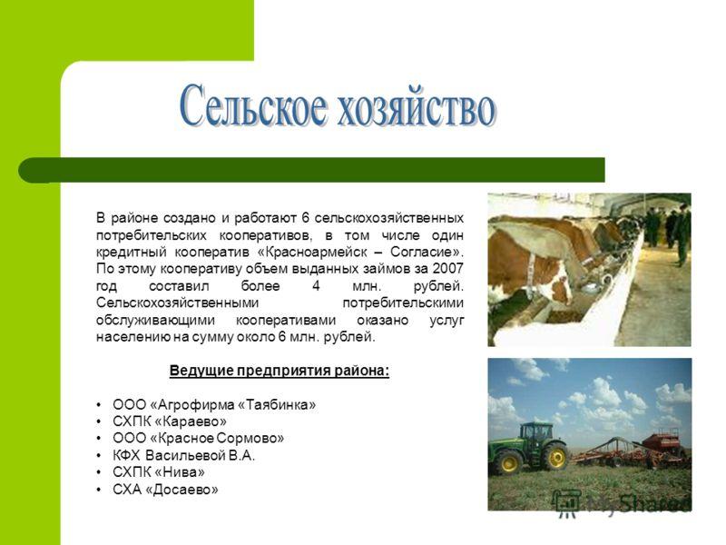 В районе создано и работают 6 сельскохозяйственных потребительских кооперативов, в том числе один кредитный кооператив «Красноармейск – Согласие». По этому кооперативу объем выданных займов за 2007 год составил более 4 млн. рублей. Сельскохозяйственн