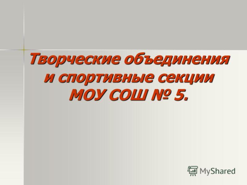 Творческие объединения и спортивные секции МОУ СОШ 5.