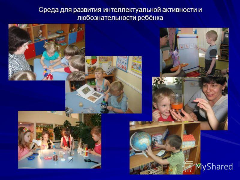 Среда для развития интеллектуальной активности и любознательности ребёнка