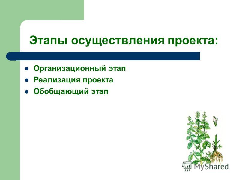 Этапы осуществления проекта: Организационный этап Реализация проекта Обобщающий этап