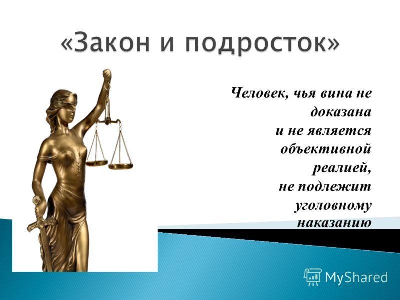 Человек, чья вина не доказана и не является объективной реалией, не подлежит уголовному наказанию