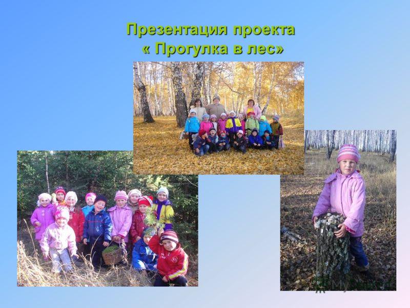 Презентация проекта « Прогулка в лес»