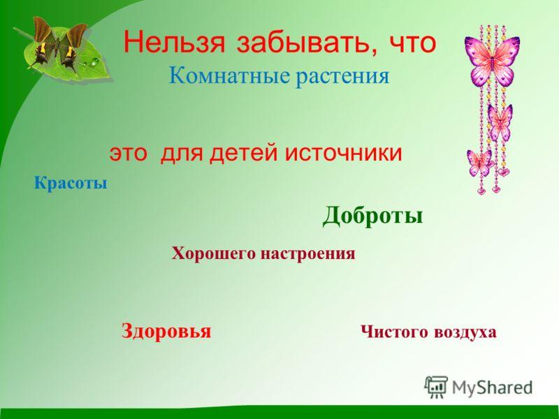 Нельзя забывать, что Комнатные растения это для детей источники Красоты Доброты Хорошего настроения Здоровья Чистого воздуха