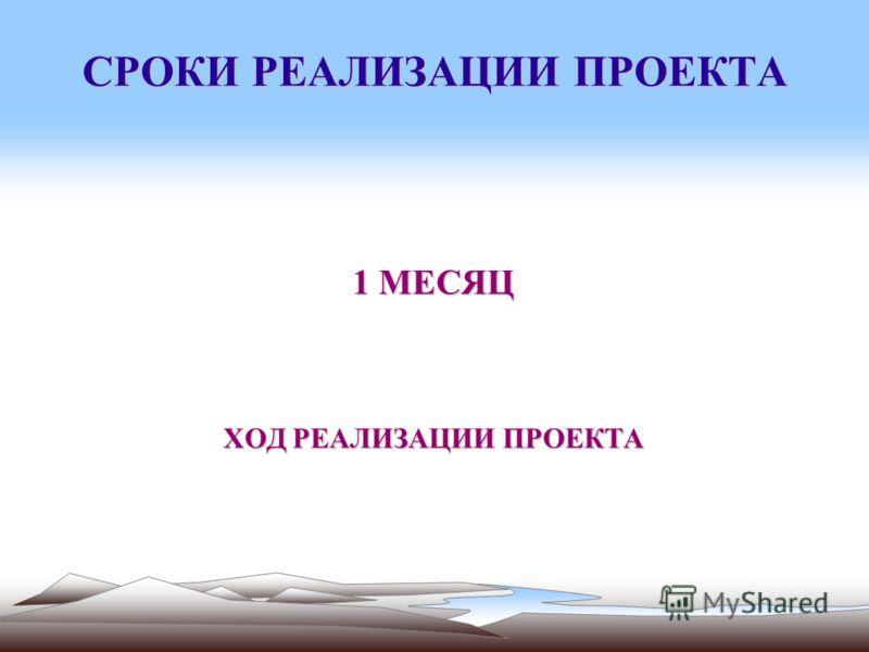 СРОКИ РЕАЛИЗАЦИИ ПРОЕКТА 1 МЕСЯЦ ХОД РЕАЛИЗАЦИИ ПРОЕКТА
