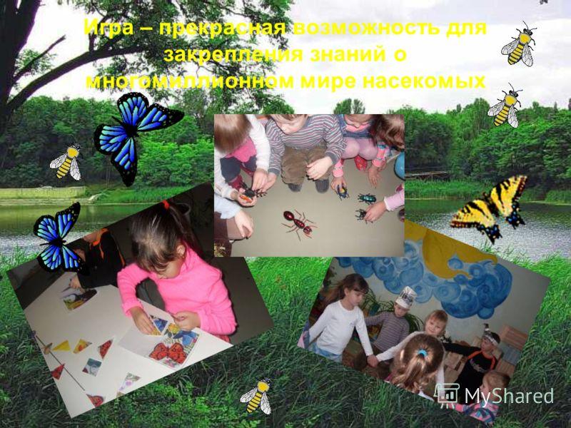 Игра – прекрасная возможность для закрепления знаний о многомиллионном мире насекомых
