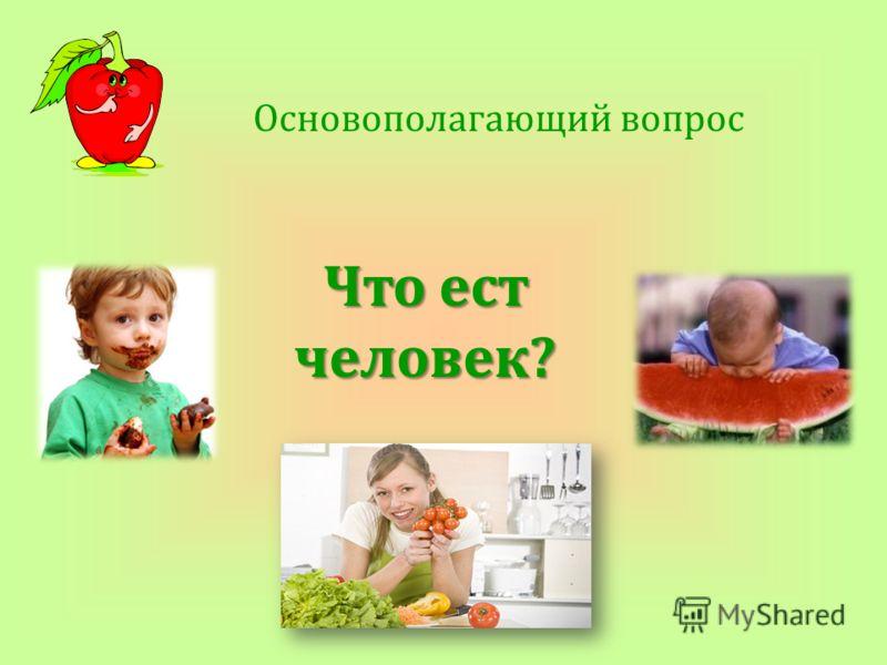 Основополагающий вопрос Что ест человек?