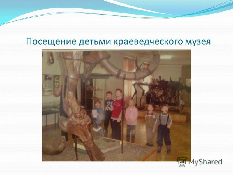 Посещение детьми краеведческого музея