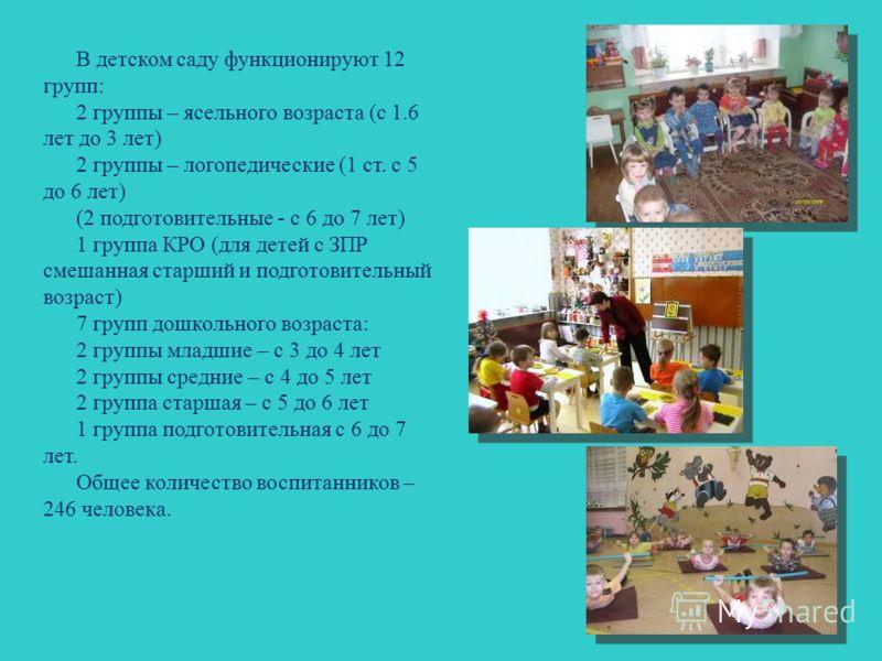 В детском саду функционируют 12 групп: 2 группы – ясельного возраста (с 1.6 лет до 3 лет) 2 группы – логопедические (1 ст. с 5 до 6 лет) (2 подготовительные - с 6 до 7 лет) 1 группа КРО (для детей с ЗПР смешанная старший и подготовительный возраст) 7
