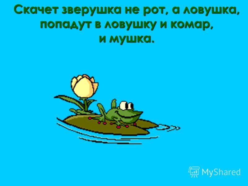 Скачет зверушка не рот, а ловушка, попадут в ловушку и комар, и мушка.
