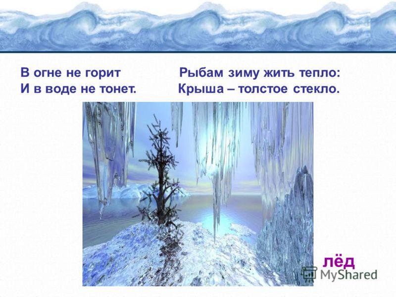 В огне не горит Рыбам зиму жить тепло: И в воде не тонет. Крыша – толстое стекло. лёд