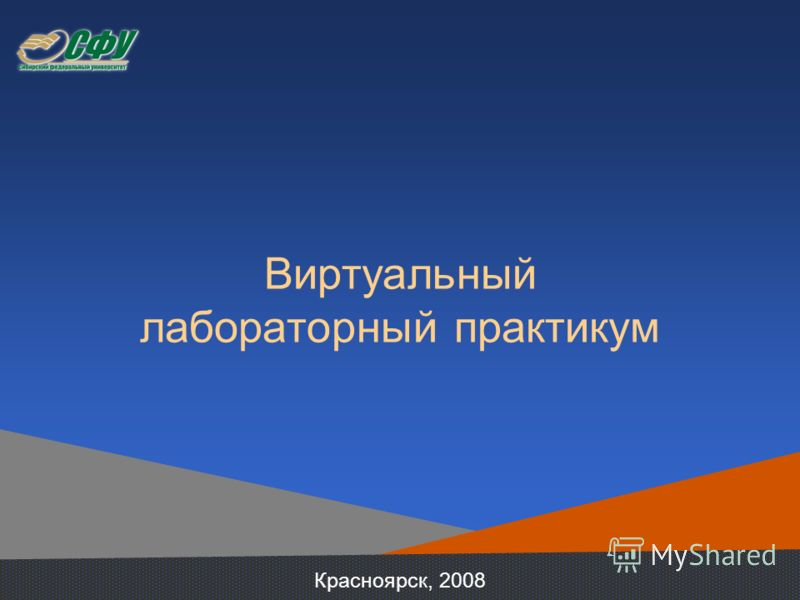 Виртуальный лабораторный практикум Красноярск, 2008