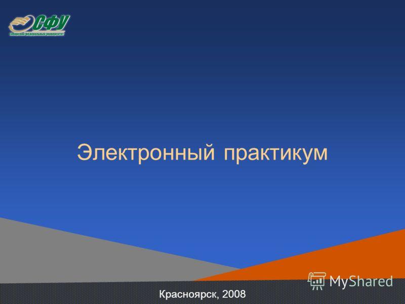 Электронный практикум Красноярск, 2008