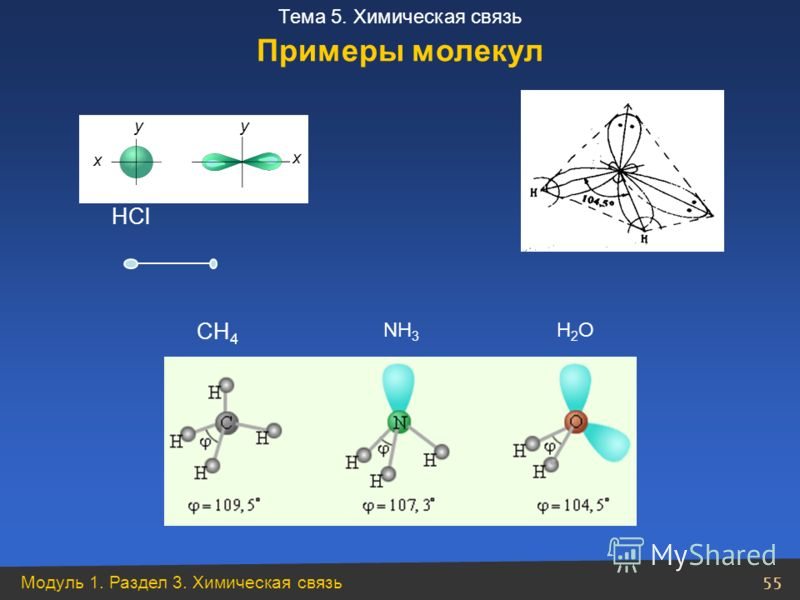 Модуль 1. Раздел 3. Химическая связь 55 Тема 5. Химическая связь НСl Н2ОН2ОNН3NН3 СН 4 Примеры молекул x x yy