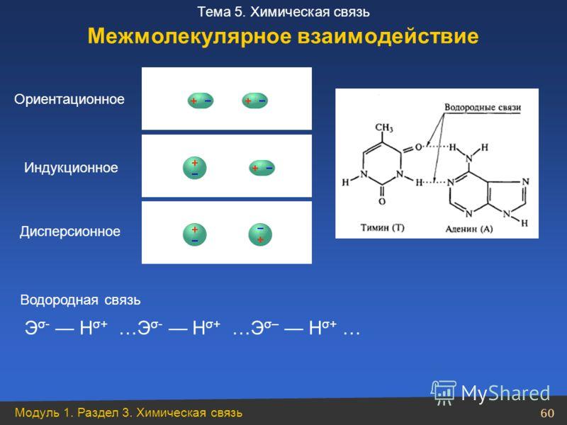 Модуль 1. Раздел 3. Химическая связь 60 Тема 5. Химическая связь Ориентационное Индукционное Дисперсионное Водородная связь Межмолекулярное взаимодействие Э σ- Н σ+ …Э σ- Н σ+ …Э σ– Н σ+ …