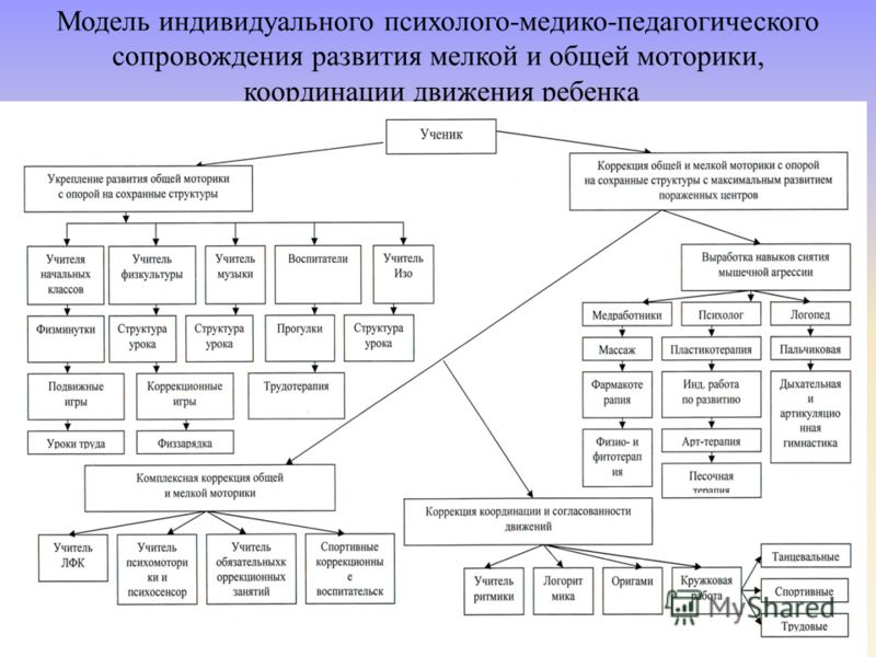 Модель индивидуального психолого-медико-педагогического сопровождения развития мелкой и общей моторики, координации движения ребенка