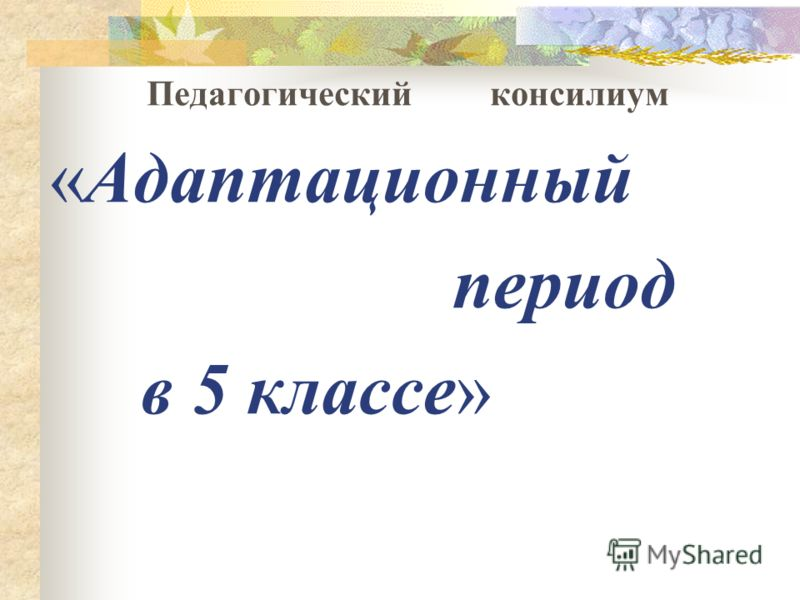 Педагогический консилиум «Адаптационный период в 5 классе»
