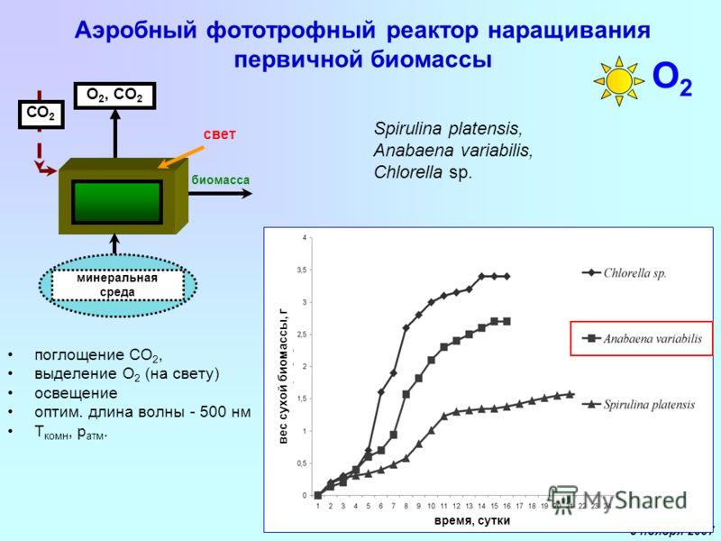9 ноября 2007 Аэробный фототрофный реактор наращивания первичной биомассы поглощение СО 2, выделение О 2 (на свету) освещение оптим. длина волны - 500 нм T комн, p атм. O 2, CO 2 биомасса свет минеральная среда СО 2 Spirulina platensis, Anabaena vari