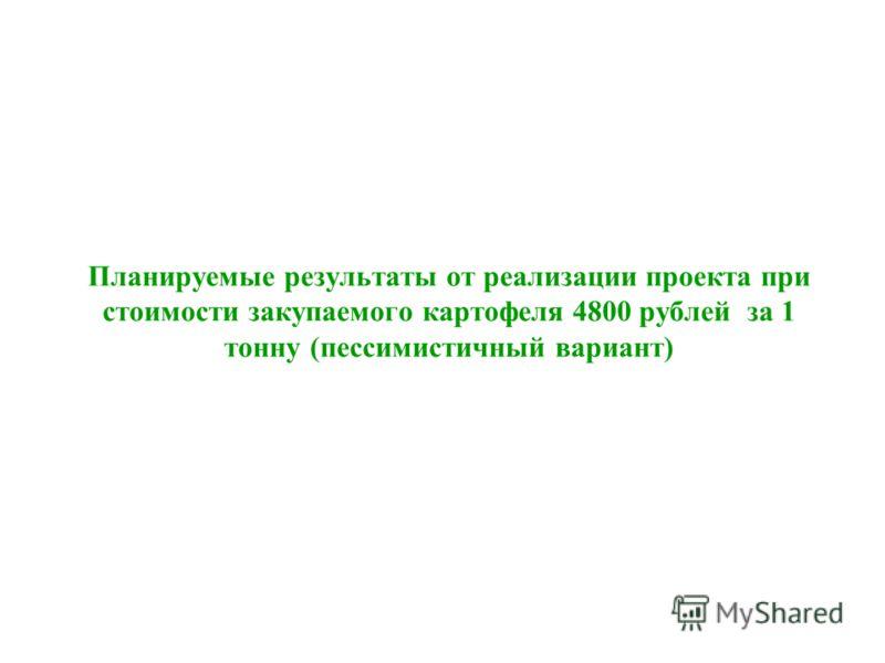 Планируемые результаты от реализации проекта при стоимости закупаемого картофеля 4800 рублей за 1 тонну (пессимистичный вариант)