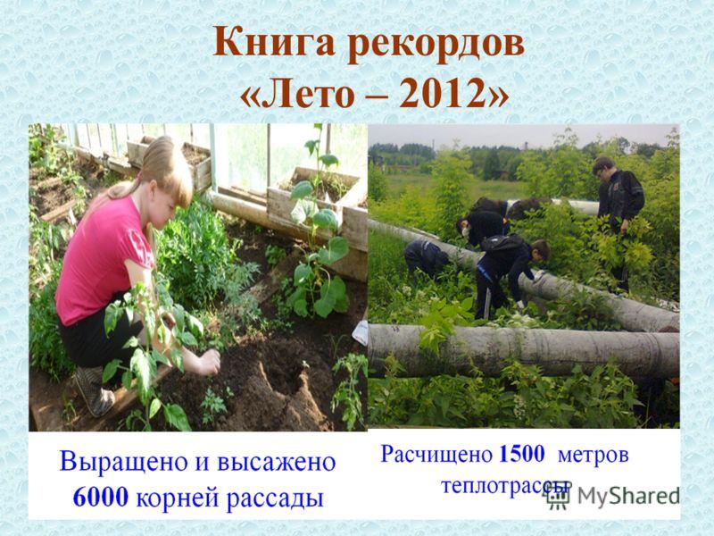 Книга рекордов «Лето – 2012»