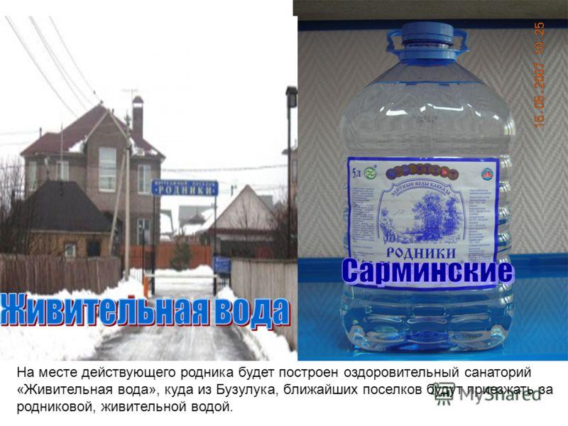 На месте действующего родника будет построен оздоровительный санаторий «Живительная вода», куда из Бузулука, ближайших поселков будут приезжать за родниковой, живительной водой.