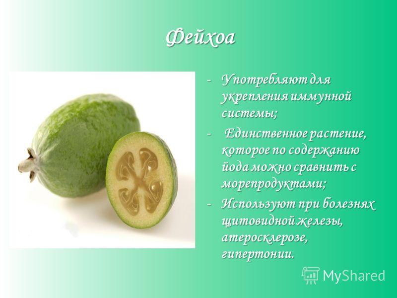 Фейхоа -Употребляют для укрепления иммунной системы; - Единственное растение, которое по содержанию йода можно сравнить с морепродуктами; -Используют при болезнях щитовидной железы, атеросклерозе, гипертонии.