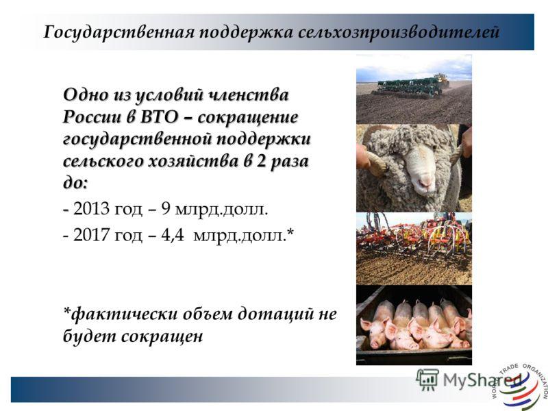 Государственная поддержка сельхозпроизводителей Одно из условий членства России в ВТО – сокращение государственной поддержки сельского хозяйства в 2 раза до: - - 2013 год – 9 млрд.долл. - 2017 год – 4,4 млрд.долл.* *фактически объем дотаций не будет