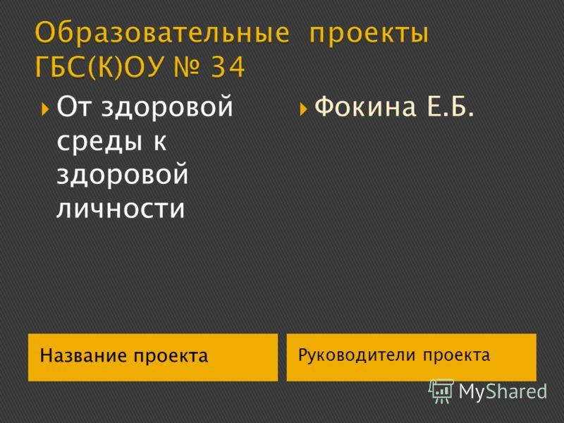 Название проекта Руководители проекта От здоровой среды к здоровой личности Фокина Е.Б.
