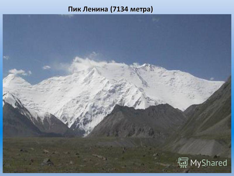 Пик Ленина (7134 метра)