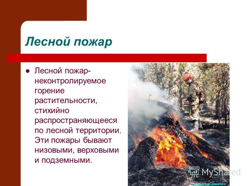 Лесной пожар Лесной пожар- неконтролируемое горение растительности, стихийно распространяющееся по лесной территории. Эти пожары бывают низовыми, верховыми и подземными.