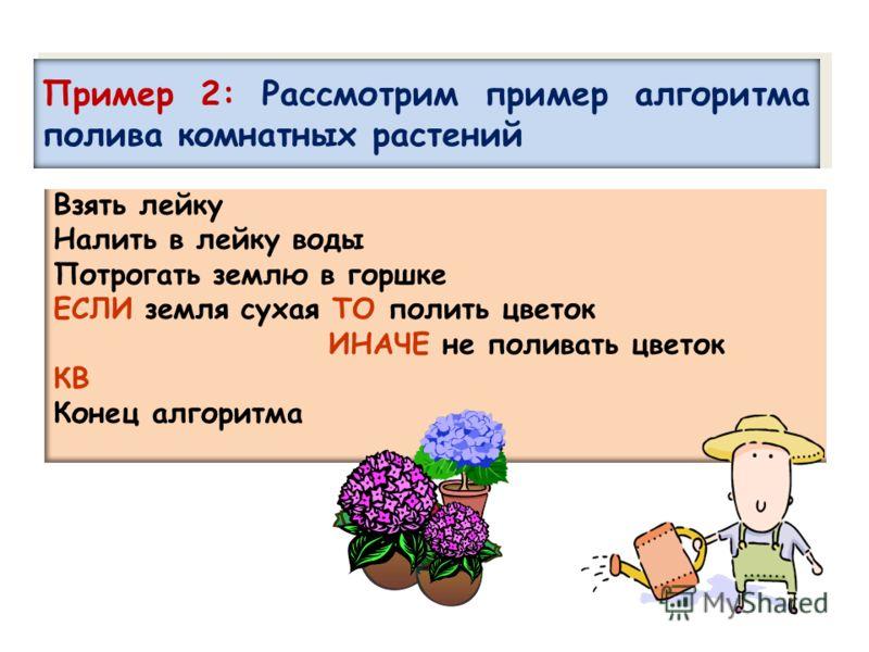 Взять лейку Налить в лейку воды Потрогать землю в горшке ЕСЛИ земля сухая ТО полить цветок ИНАЧЕ не поливать цветок КВ Конец алгоритма Пример 2: Рассмотрим пример алгоритма полива комнатных растений