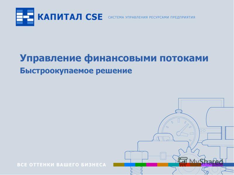 www.capitalcse.ru Управление финансовыми потоками Быстроокупаемое решение