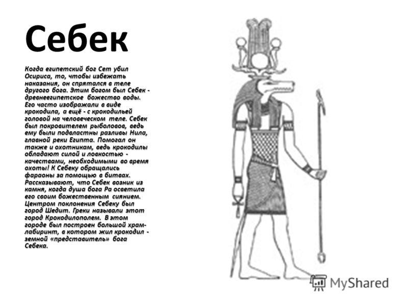Себек Когда египетский бог Сет убил Осириса, то, чтобы избежать наказания, он спрятался в теле другого бога. Этим богом был Себек - древнеегипетское божество воды. Его часто изображали в виде крокодила, а ещё - с крокодильей головой на человеческом т