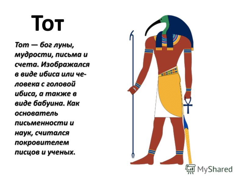 Тот Тот бог луны, мудрости, письма и счета. Изображался в виде ибиса или че ловека с головой ибиса, а также в виде бабуина. Как основатель письменности и наук, считался покровителем писцов и ученых.