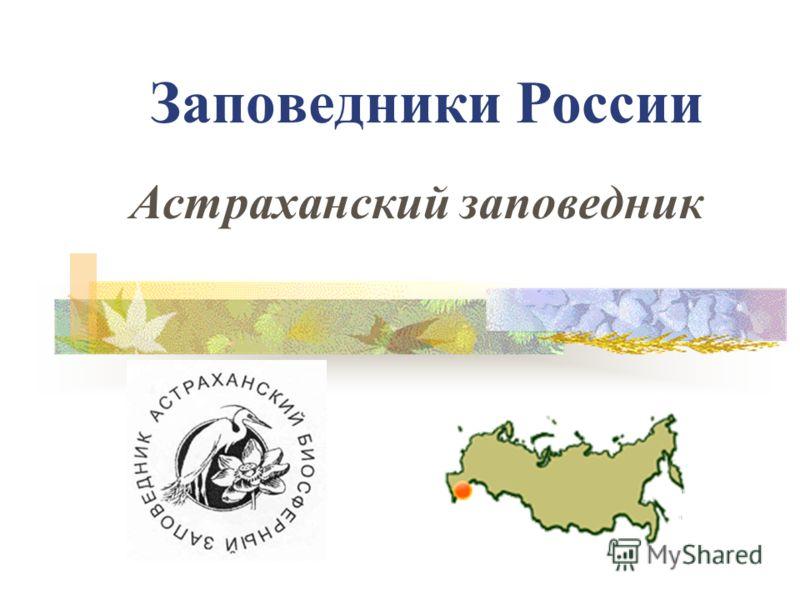 Заповедники России Астраханский заповедник