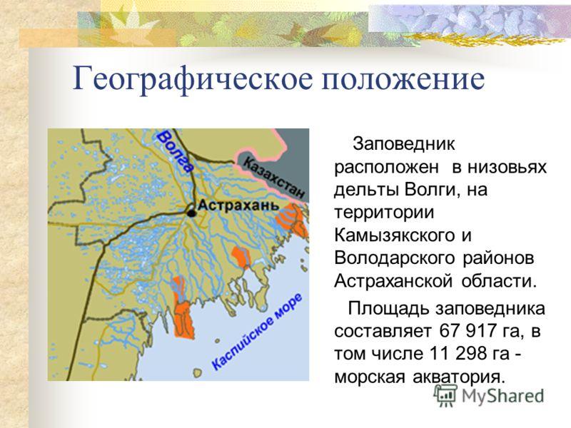 Географическое положение Заповедник расположен в низовьях дельты Волги, на территории Камызякского и Володарского районов Астраханской области. Площадь заповедника составляет 67 917 га, в том числе 11 298 га - морская акватория.
