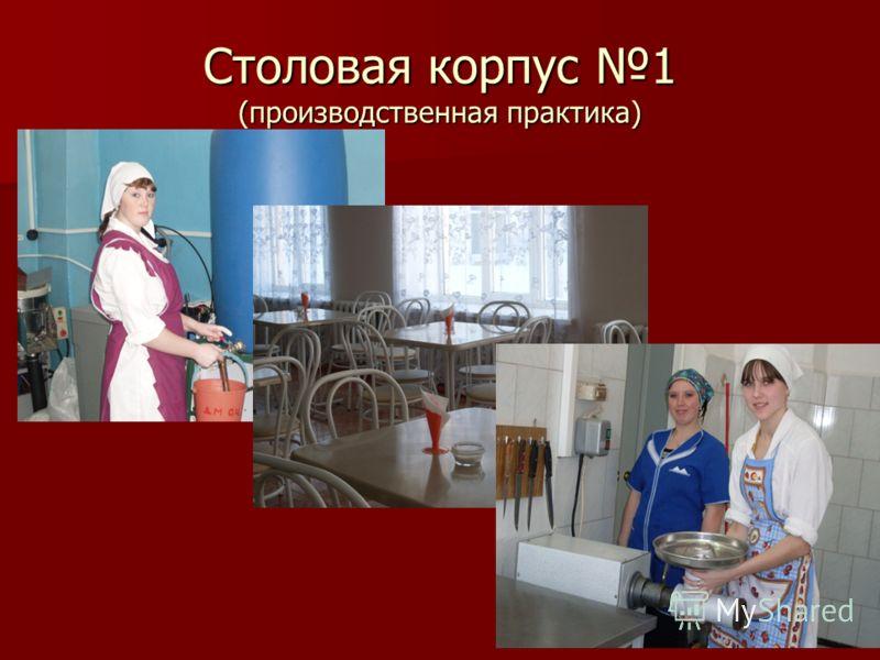 Столовая корпус 1 (производственная практика)