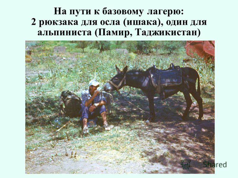 На пути к базовому лагерю: 2 рюкзака для осла (ишака), один для альпиниста (Памир, Таджикистан)