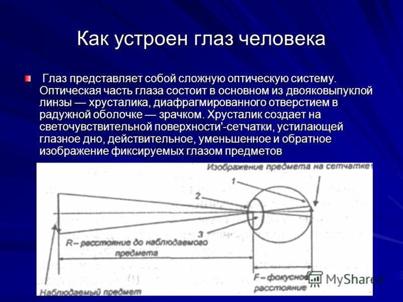 Как устроен глаз человека Глаз представляет собой сложную оптическую систему. Оптическая часть глаза состоит в основном из двояковыпуклой линзы хрусталика, диафрагмированного отверстием в радужной оболочке зрачком. Хрусталик создает на светочувствите