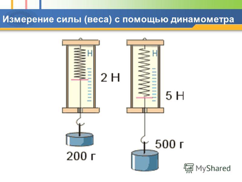 Измерение силы (веса) с помощью динамометра