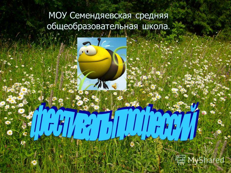 МОУ Семендяевская средняя общеобразовательная школа.