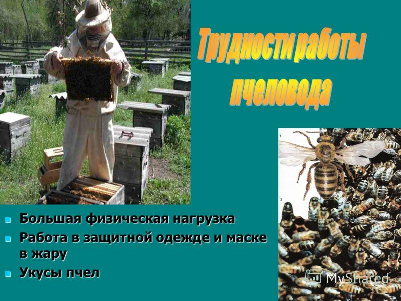 Большая физическая нагрузка Большая физическая нагрузка Работа в защитной одежде и маске в жару Работа в защитной одежде и маске в жару Укусы пчел Укусы пчел