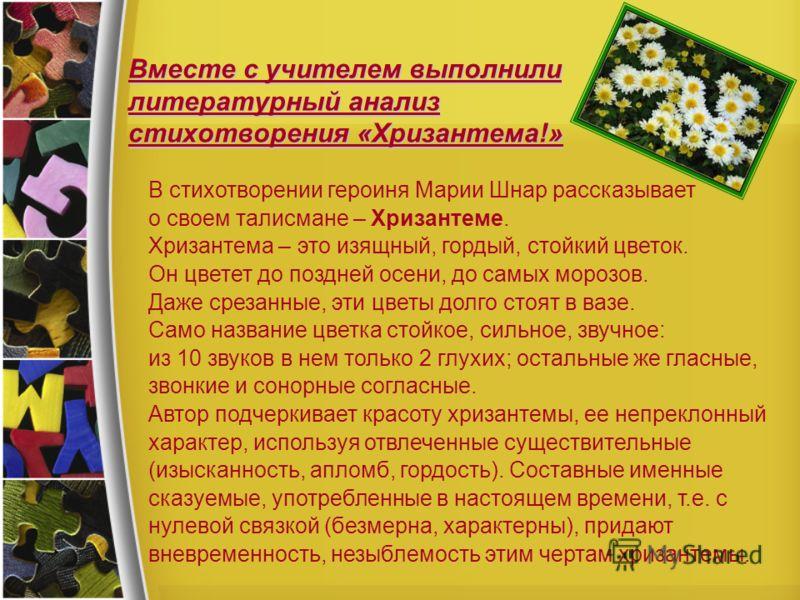 Вместе с учителем выполнили литературный анализ стихотворения «Хризантема!» В стихотворении героиня Марии Шнар рассказывает о своем талисмане – Хризантеме. Хризантема – это изящный, гордый, стойкий цветок. Он цветет до поздней осени, до самых морозов