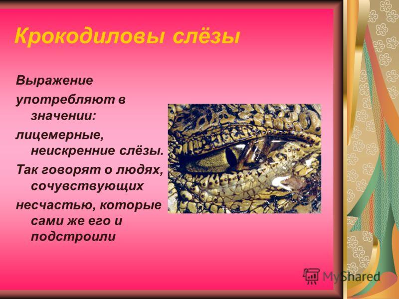 Крокодиловы слёзы Выражение употребляют в значении: лицемерные, неискренние слёзы. Так говорят о людях, сочувствующих несчастью, которые сами же его и подстроили
