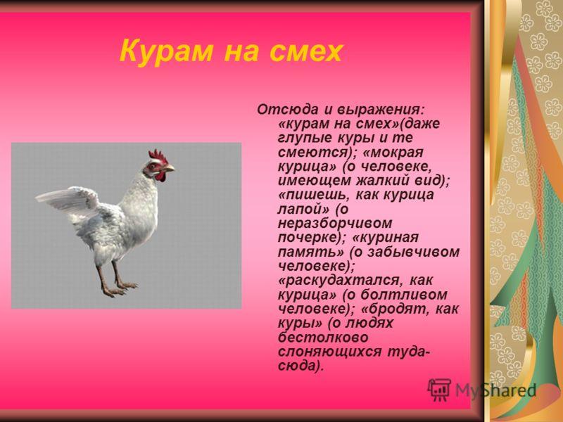 Курам на смех Отсюда и выражения: «курам на смех»(даже глупые куры и те смеются); «мокрая курица» (о человеке, имеющем жалкий вид); «пишешь, как курица лапой» (о неразборчивом почерке); «куриная память» (о забывчивом человеке); «раскудахтался, как ку