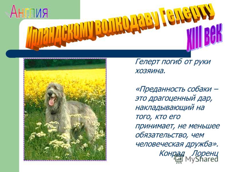 Гелерт погиб от руки хозяина. «Преданность собаки – это драгоценный дар, накладывающий на того, кто его принимает, не меньшее обязательство, чем человеческая дружба». Конрад Лоренц